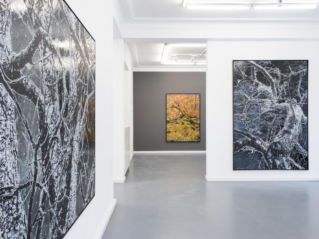 Jan Davidoff Galerie Binder, München